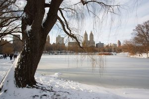 new york a natale
