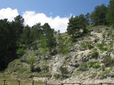 vista dal parco dei Monti Simbruini