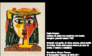 La mostra di Picasso a Pisa