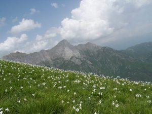 le montagne della Garfagnana