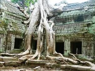 I templi di Angkor in Cambogia
