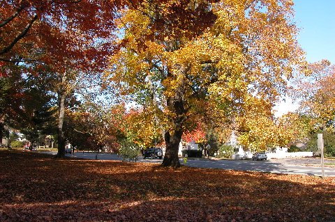 vermont autunno foliage usa