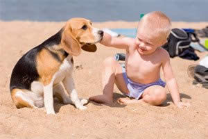 In vacanza a Bibione con il proprio cane