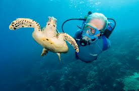 cousteau-diving-caraibi_2