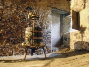tour-enogastronimco-tra-le-colline-del-piacenzano-1